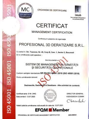 profesional-certificat-3