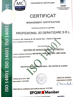 profesional-certificat-5